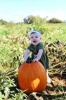Pumpkin Patch 2017/ 9 months
